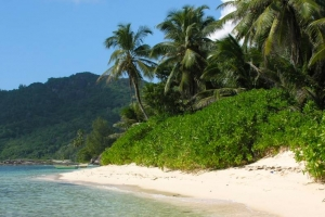 Things to do in Seychelles thumbnail