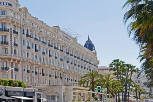 Cannes Discovery Guide thumbnail
