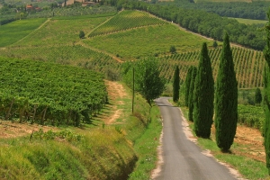 Tuscany Pictures thumbnail
