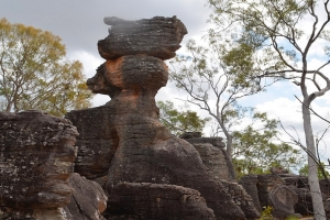 Litchfield National Park thumbnail